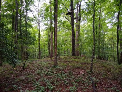 38 Acres - Chesterfield County Sc : Jefferson : Chesterfield County : South Carolina