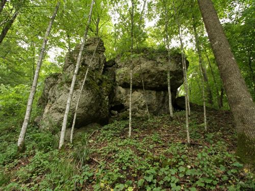 Monumental Hunting Property Sw Wi : Richland Center : Richland County : Wisconsin