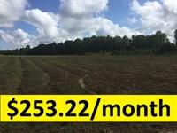 Owner Financed Estate Lot : Cadwell : Laurens County : Georgia