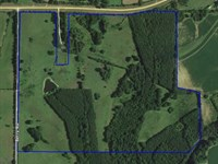 143 Acres In Hinds County, Ms : Utica : Hinds County : Mississippi
