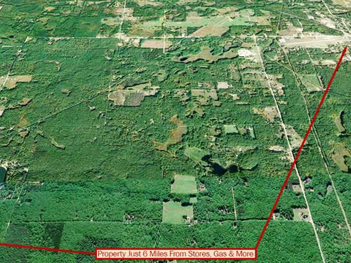 Lot Near Diamond Lake : White Cloud : Newaygo County : Michigan