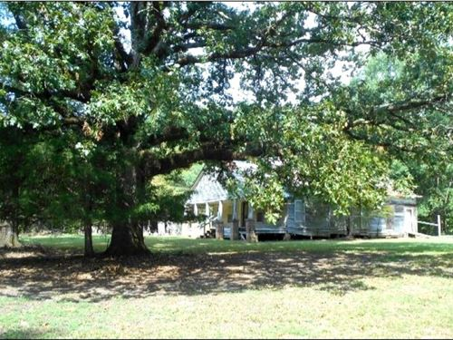 250.3 Acres In Choctaw County In Fr : French Camp : Choctaw County : Mississippi