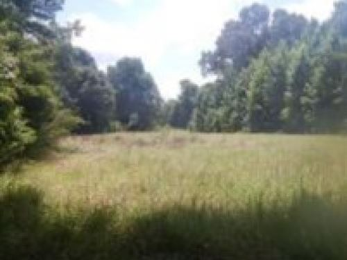 210 Acres In Claiborne County, Ms : Hermanville : Claiborne County : Mississippi
