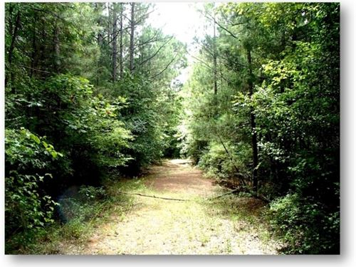 69 Acres In Choctaw County In Acker : Ackerman : Choctaw County : Mississippi