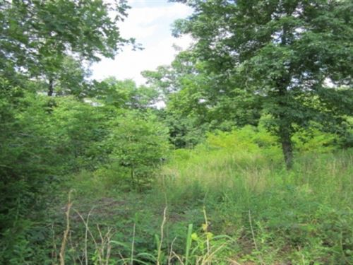 7.39 Acres In Union County In New : New Albany : Union County : Mississippi