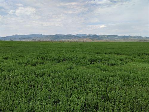 Working Farm In Chesterfield Idaho : Chesterfield : Bannock County : Idaho