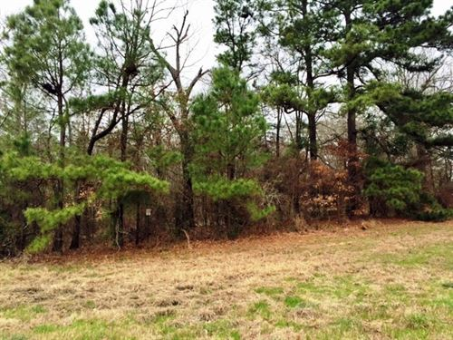 7+ Wooded Acres : De Kalb : Bowie County : Texas