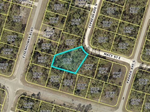 Beautiful Wooded Lot For Sale : Lehigh Acres : Lee County : Florida