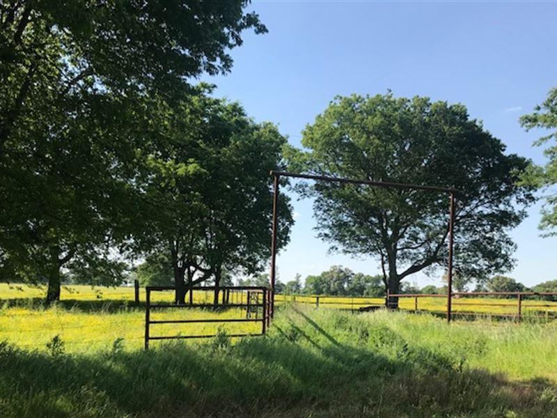 Pasture Land : De Kalb : Bowie County : Texas