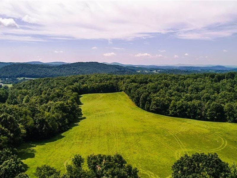 Land Auction 201 Ac In 7 Tracts : Floyd : Floyd County : Virginia