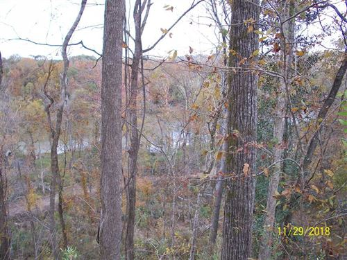 147 Acres Bayou Pierre Hunting : Port Gibson : Claiborne County : Mississippi