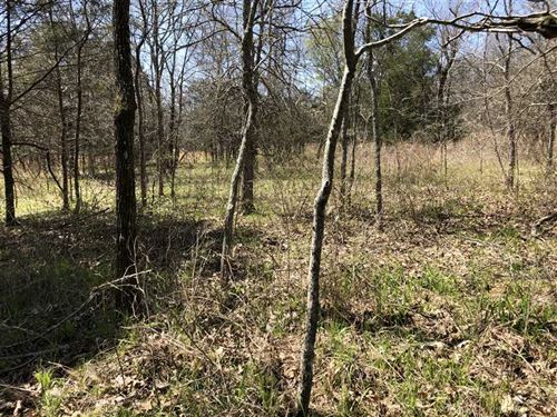 102 Acres Stone County Getaway : Mountain View : Stone County : Arkansas