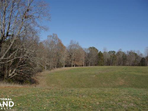 Camp Creek Farmland And Hunting Tra : Lancaster : South Carolina