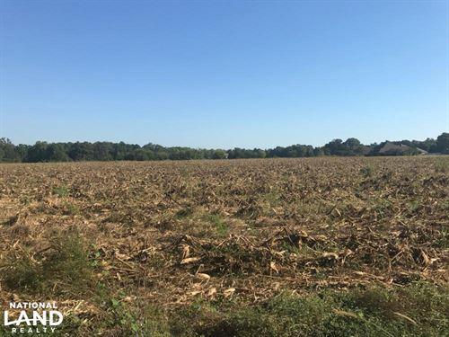 McPherson Landing Road Residential : Tuscaloosa : Alabama
