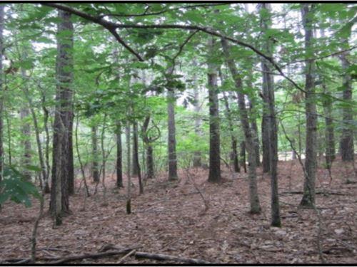 .58 Acre Lot In Tishomingo County : Iuka : Tishomingo County : Mississippi