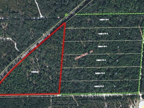 Vacant Land A-495 : Melrose : Alachua County : Florida