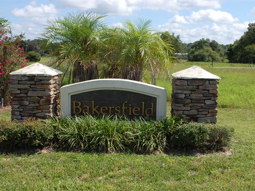 Bakersfield Subdivison : Keystone Heights : Clay County : Florida