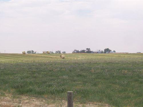 Matney Unit-Pheasant Ridge Farm : Yoder : Goshen County : Wyoming
