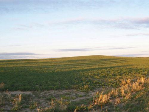Shaw Place-Pheasant Ridge Farm : Yoder : Goshen County : Wyoming