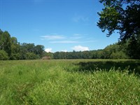 Northeast Ga Farmland/Recreational : Nicholson : Jackson County : Georgia