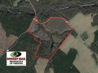 Reduced, 109 Acres of Hunting Lan : Dragonville : King And Queen County : Virginia