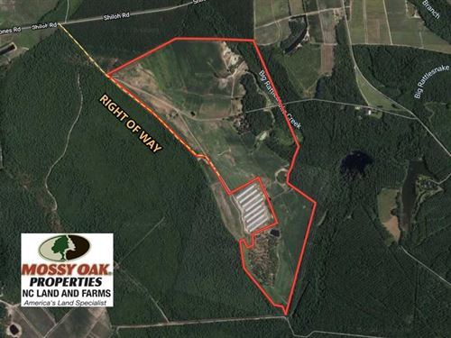280.2 Acres of Farm And Hunting LA : Ivanhoe : Pender County : North Carolina