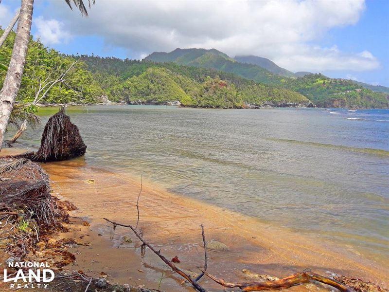Caribbean Beachfront Property : Calibishie : Saint Andrew