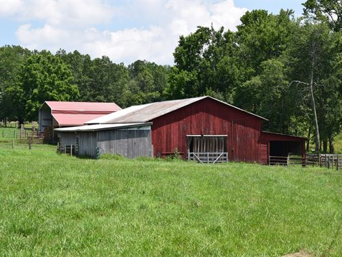 Beautiful Mini Farm Next To Wma : Scottsboro : Jackson County : Alabama