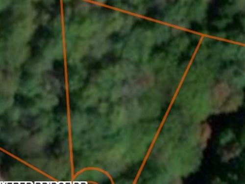 Beautiful Wooded Lot For Sale : Palmyra Township : Wayne County : Pennsylvania
