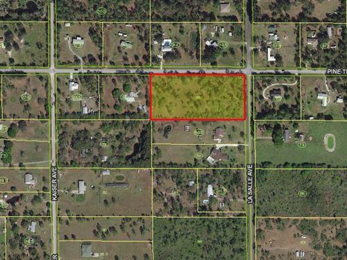 Beautiful Wooded Lot For Sale : Saint Cloud : Osceola County : Florida