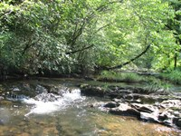 Secluded Mountain Property : Reliance : Polk County : Tennessee