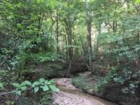 84+/- Acres Prime Recreational Land : Enoree : Spartanburg County : South Carolina