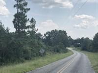 25 +/- Acres Holmes Langford Rd : Opp : Covington County : Alabama