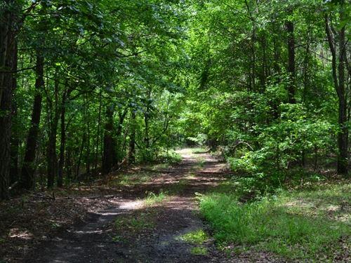 Ridge Top Oaks : Whitesburg : Carroll County : Georgia