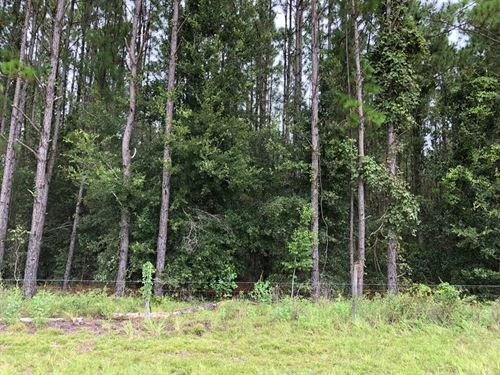 Beautiful 4.59 Acres 776257 : Chiefland : Levy County : Florida