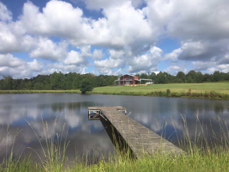 300 Acres And Lodge Martinsville Ro : Wesson : Copiah County : Mississippi