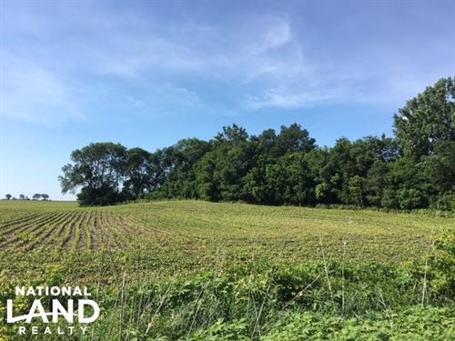 Farmland Hunting/Rec Woods Crp : Owatonna : Steele County : Minnesota