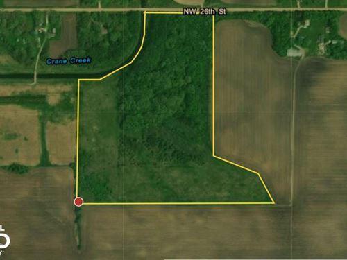 Hunting/Rec Woods Crp, Owatonna : Owatonna : Steele County : Minnesota