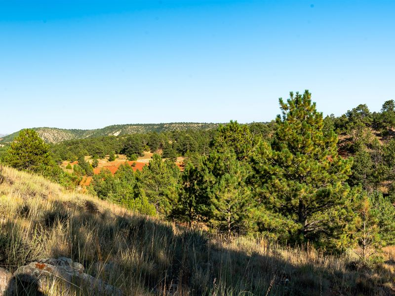Remington Ridge Glendo Lot : Glendo : Platte County : Wyoming