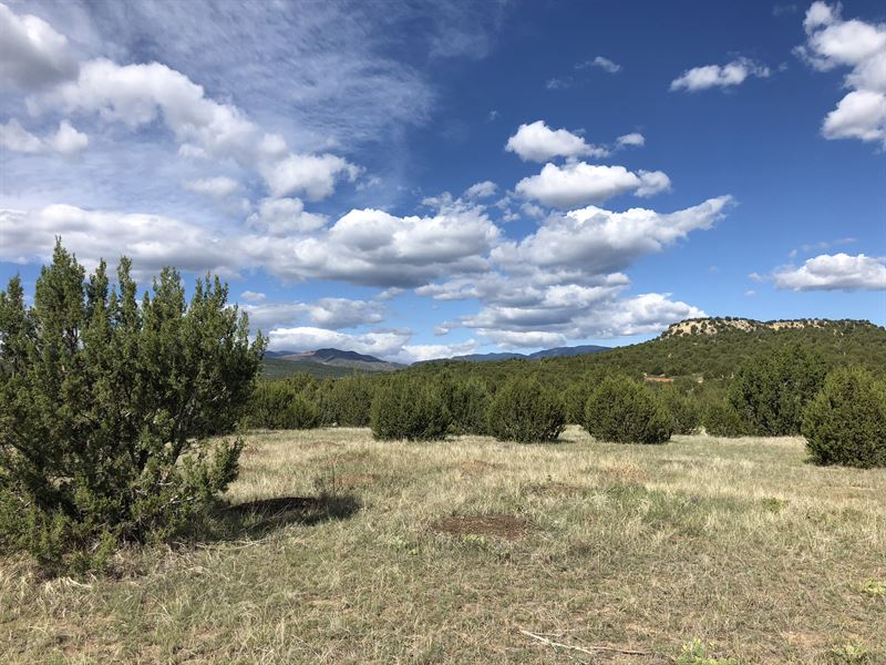 Red Creek Springs Ranch : Pueblo : Pueblo County : Colorado
