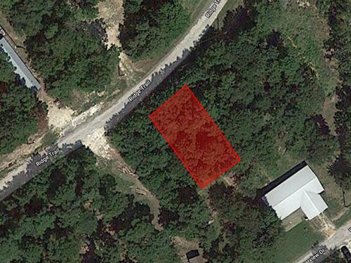 .12 Acre Lot : Trinity : Texas
