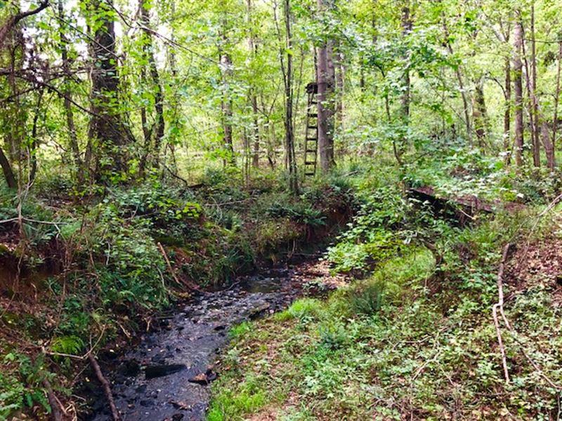 Cheap Hunting Tract, Homesite : Culloden : Lamar County : Georgia