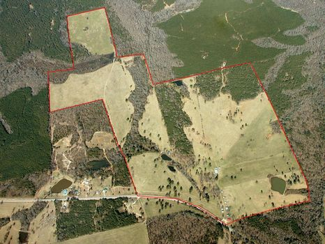 330 Acres : Greenville : Meriwether County : Georgia