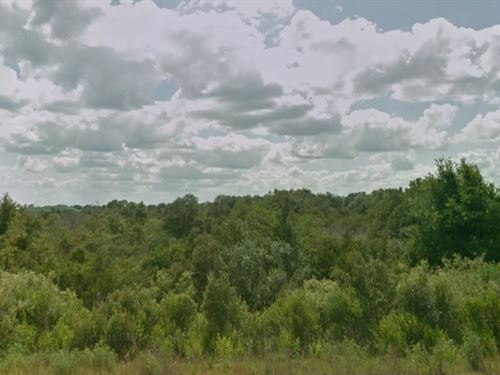 Okeechobee County, Fl $21,500 Neg. : Okeechobee : Florida