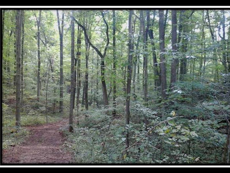 Bethel Ridge Tract 4 : Jackson : Jackson County : Ohio