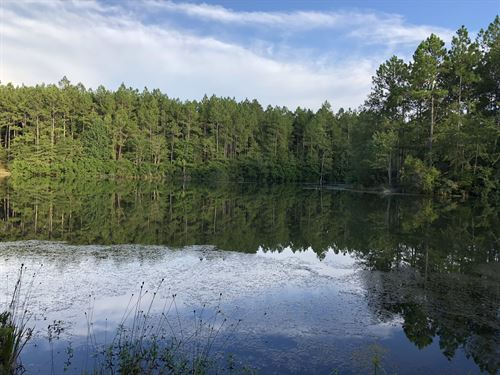 Outstanding Hunting Tract : Poplarville : Pearl River County : Mississippi