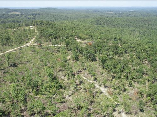 13 Acre Recreational Dream Property : Ava : Douglas County : Missouri