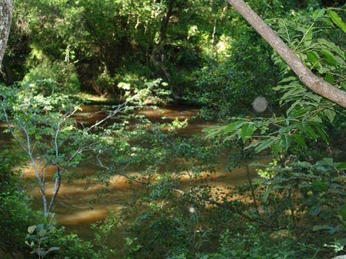 Gulley Tract : Linden : Harnett County : North Carolina