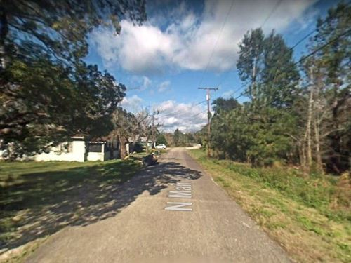 1 Acres In Hastings, FL : Hastings : Saint Johns County : Florida