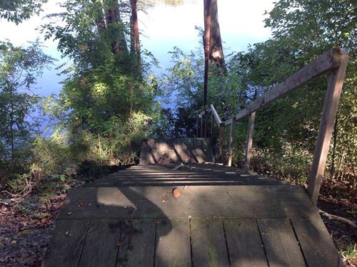 Horseshoe Lake Property : Augusta : Woodruff County : Arkansas